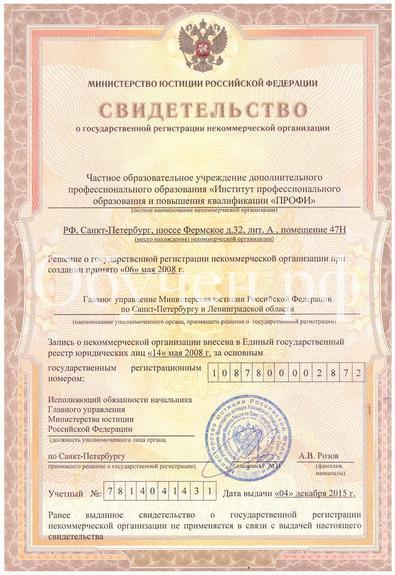 Свидетельство о регистрации ПРОФИ